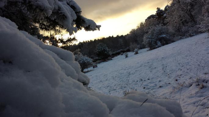 Licht am Horizont über verschneiter Winterlandschaft