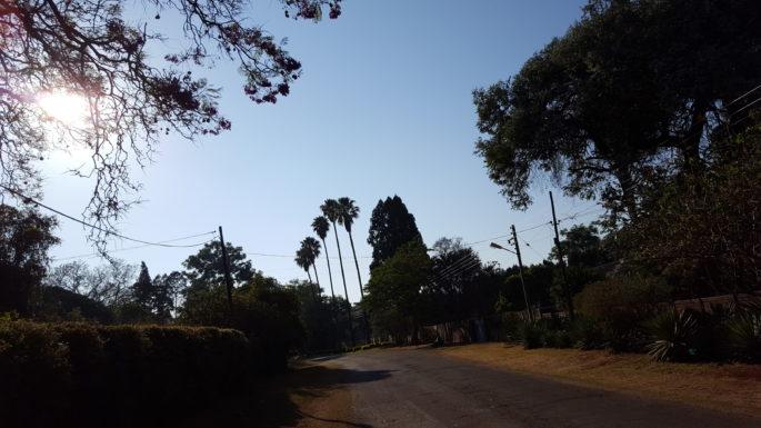 Meine Nachbarschaft in Harare: breite Straßen, Villengrundstücke, vertrocknetes Gras, Palmen, blauer Himmel