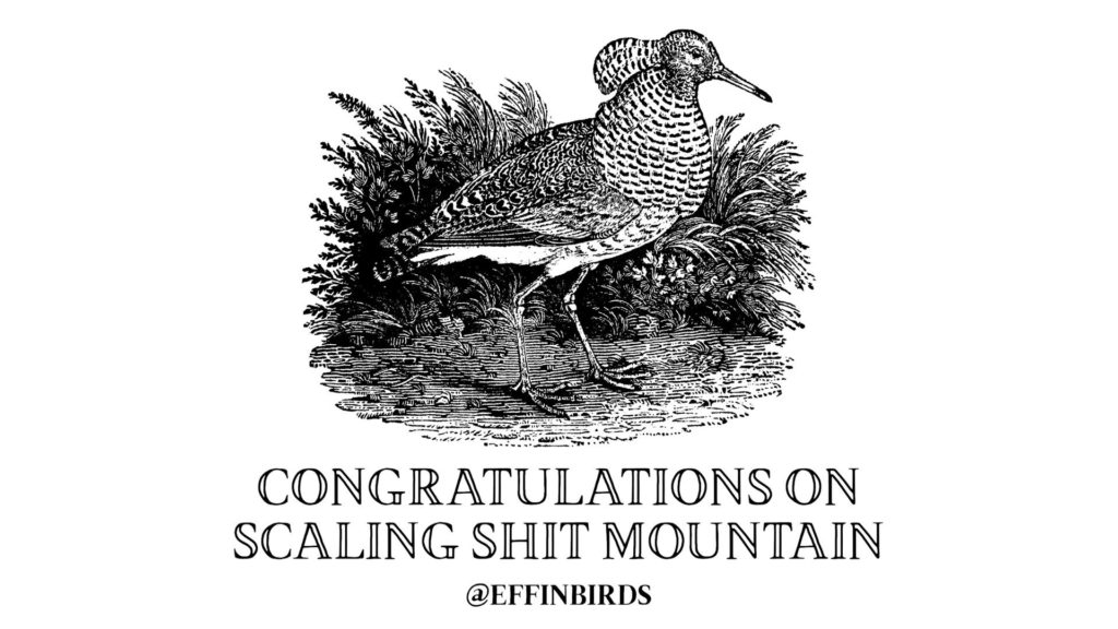 EffinBird: Congratulations on scaling shit mountain